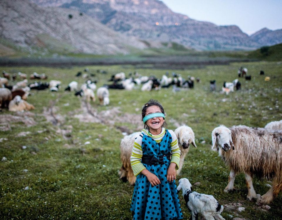 During transhumance, the Bakhtiari people, such as Mahsan and her family, camp at a different site every night for their animals to graze on fresh pastures. Near Lali, Khuzestan Province, April 2016. Shirin Bahar,  near Lali, Khuzestan – Avril 2016 Pendant les 20 jours que dure la transhumance, la petite Mahsan et sa famille se posent chaque nuit dans un lieu différent, aux pâturages de plus en plus verts …